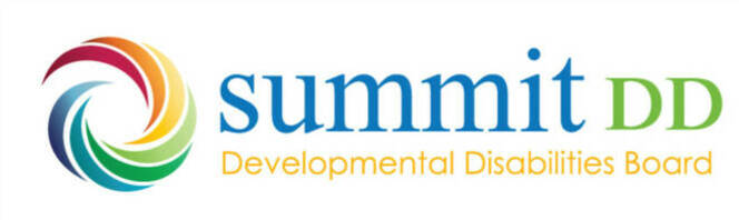 Summit dd board logo